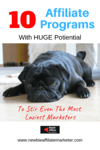 affiliate programs for the laziest marketers