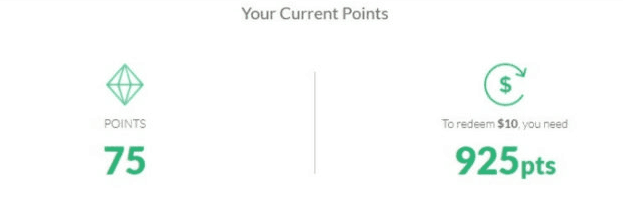 points total in survey junkie