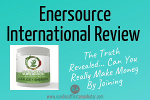 Enersource International Review