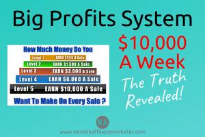 big profits system review